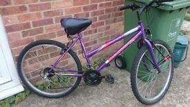 Mountain Bike - brand new tire 50£