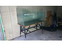 Aquarium / Vivarium with custom made table.