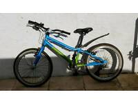 "Boys 20"" blue Pinnacle bike"
