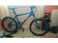 Carrara bike