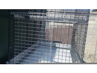 Brand new degus cage need gone today