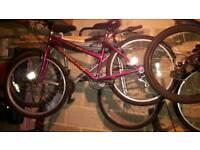21 gear mountain bike