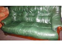 Green leather 3.1.1