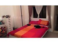 IKEA MALM Double Bed Frame - high, white, Luröy