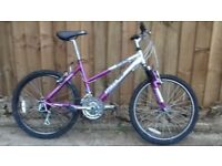 GIRLS TEENAGE LADIES WOMEN APOLLO 24 INCH WHEELS 18 INCH FRAME 18 SPEED BIKE BICYCLE