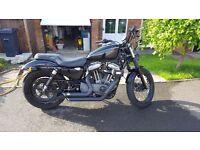 Harley Davidson Nighster 1200cc sportster 48