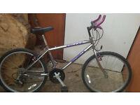 cheap medium sized framed bike for sale £20 ( 07449 529 234 )