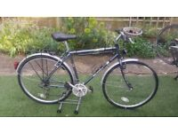 "Peugeot Country 'Randobike' Town & Country Hybrid Bike frame 21""/ gears 21 speeds /wheel 700cc"