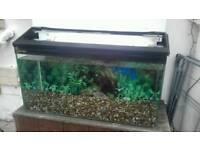 2&half ft fish tank