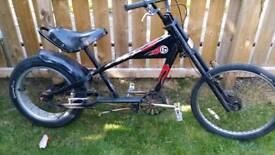 Adult schwinn cruiser bike