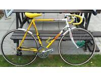Retro falcon team banana race bike