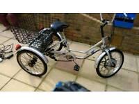 3 Wheel electric bike