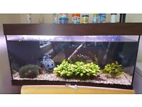 4ft juwel aquarium fish tank
