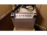 amplifier portable