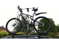 Pair of Hydraulic Bike Bicycle Carriers Lifts for Car Roof, with Manual