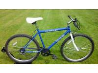 MENS SPIKE MOUNTAIN BIKE * FULLY SERVICED / GOOD CONDITION *