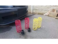 Apex and pro sport rear lowing springs for skoda octavia ,golf 4 seat leon ect