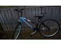  Ladies / Gent's Raleigh bike *aluminium lightweight 15 inch frame*