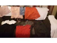 Ladies Clothes bundle Size 12-14 inc: River island and Next items