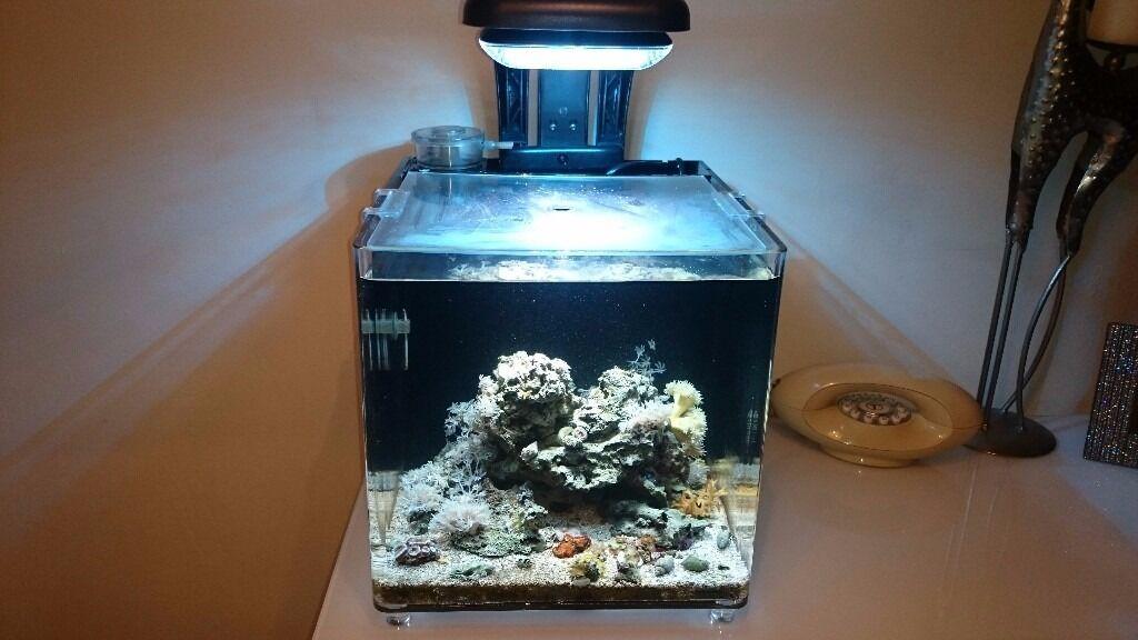 tmc microhabitat 30l aquarium nano reef aquaray 500hd led light heater skimmer hydor pump in. Black Bedroom Furniture Sets. Home Design Ideas