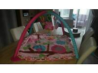Charming Chirps Activity Play Gym
