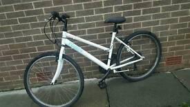 Ladies all terrain bicycle