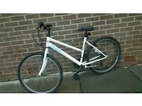 Ladies all terrain bicycle