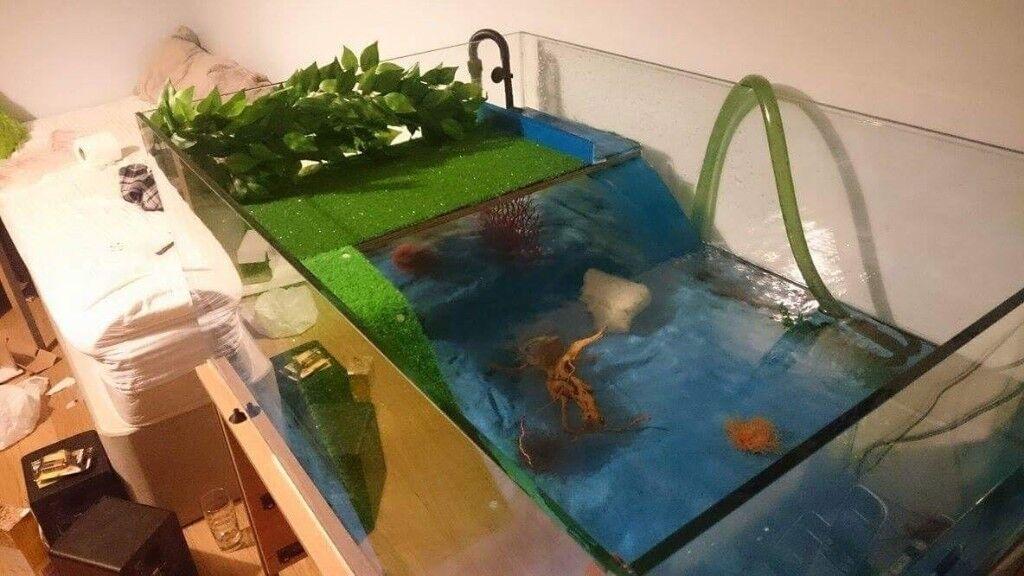Large 340L Custom Turtle/Fish Tank Aquarium | in Wargrave, Berkshire | Gumtree