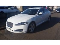 Jaguar XF 2.2d White excellent condition.