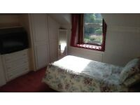 Bright Room Available In Quiet Friendly Flat