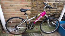 Pink Adults Rayleigh Mountain Bike