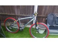 Rare chrome xlite mountain bike
