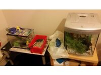 2 fish tanks with all accesories £45 the lot