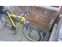 Yellow and green bike