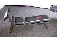 York warrior 2 in 1 dumbell and ab workout bench