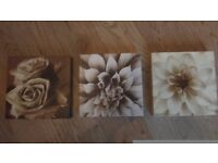 Three small flower frames