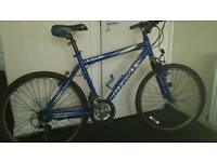 Blue gaint mountain bike