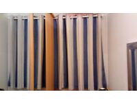 Next - blue and white curtains