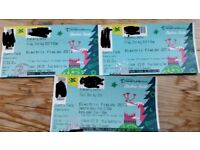 Selling early bird Electric Field ticket - all 3 days + posh showers and loos