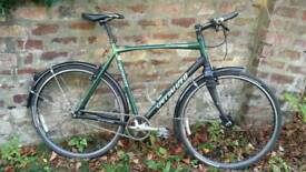 Specialized single speed (large)
