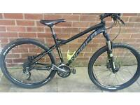 Norco charger7