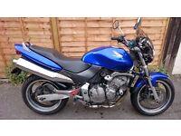Honda Hornet CB600FY Blue