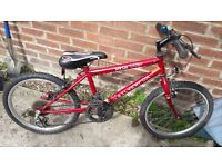 Boys mtx mountain bike