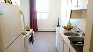9th Floor Downtown Pet Friendly 2 Bedroom Available Immediately!