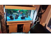 Fish tank and cabinet 180 litre