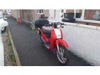 Honda SGX 50 Sky Moped 49cc New Mot Excellent Condition