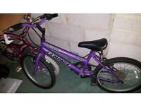 Child's bike (girls 7+) universal