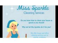 Miss sparkle Medway cleaning services