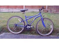 apollo 15 speed mountain bike for sale in working order