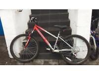 Boys bronx bike